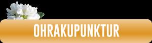 Button_Ohrakupunktur